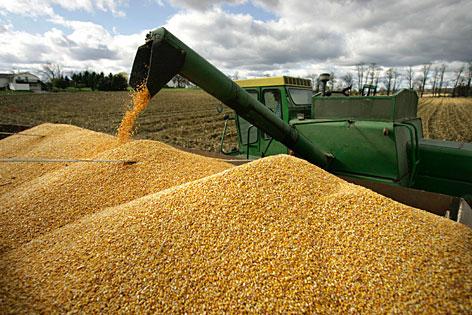 http://oklahomafarmreport.com/wire/news/2012/09/media/04698_cornharvest03132012.jpg