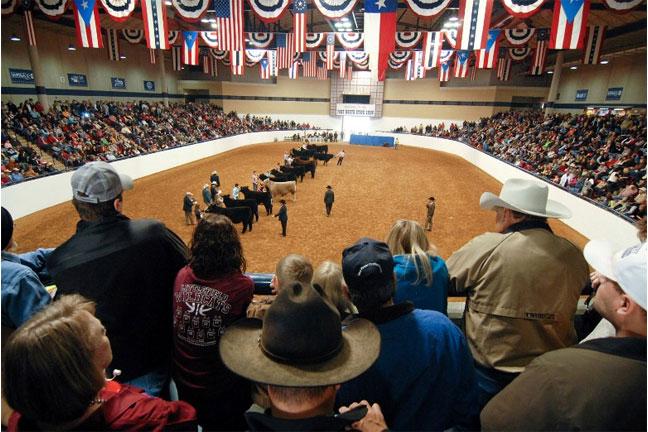 Oklahoma Farm Report Tcu Ranch Management Students Find