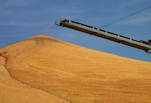 Corn, Sorghum and Cotton Harvest Underway Nationally