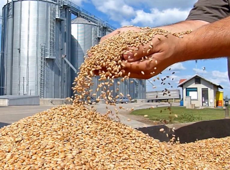 Oklahoma Grain Elevator Cash Bids